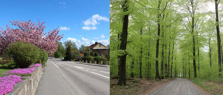 Finjavägen i Tyringe och Bokskogen i Skälsböke