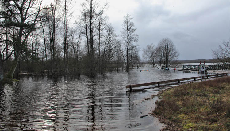 Foto Bert Wilnerzon - Finjasjön vid Mölleröd Almaån, Tyringe