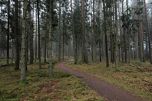 Motionsspåret i Tyringe